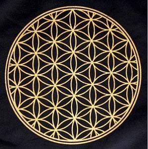 Flower of Life Grid