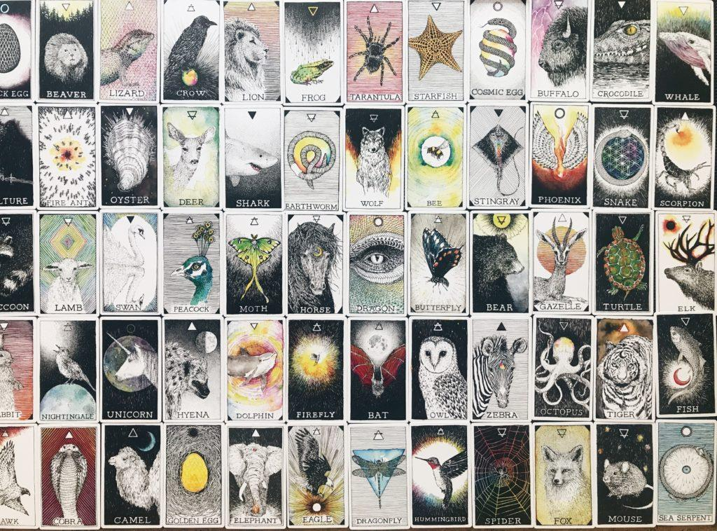 animal spirit cards front side