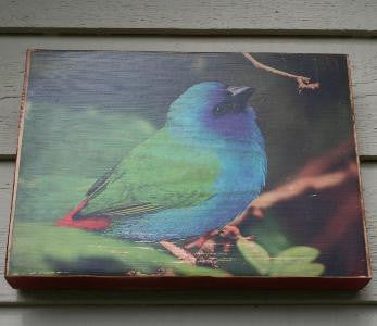 "Ten Oaks Design - 7.25"" x10.25"" Wood Block Art - Bird"