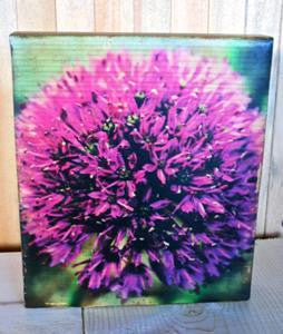 "Ten Oaks Design - 7.25"" x 10.25"" Wood Block Art - Round Purple Flower"