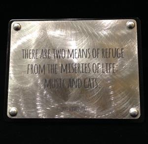 Albert Schweitzer quote on stainless steel plaque