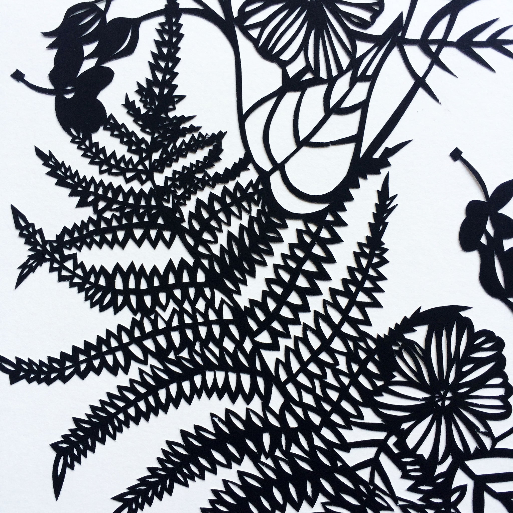 Cosmos & Ferns II | Original Papercut