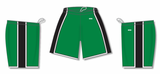 Athletic Knit (AK) BS1735 Kelly Green/Black/White Pro Basketball Shorts