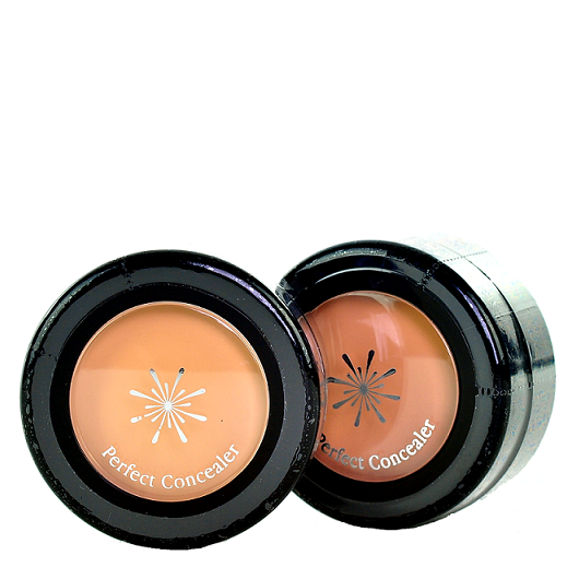 Missha - The Style Perfect Concealer | Chuusi | Shop Korean and Taiwanese Cosmetics & Skincare at Chuusi.ca - 1