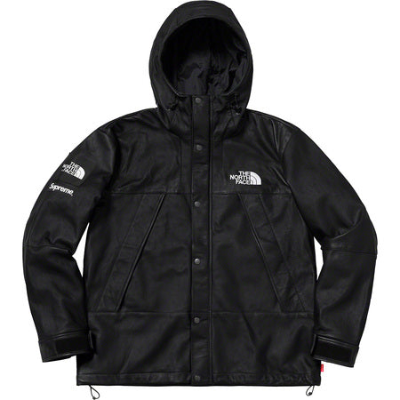 Supreme x The North Face Leather Parka