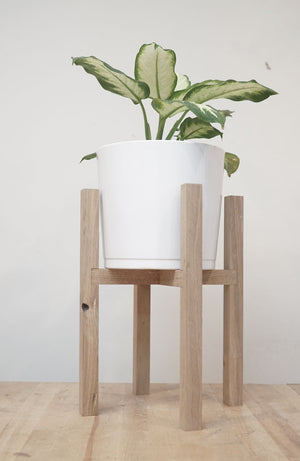 Mid-Century Plant Stand (July 25 & 27)