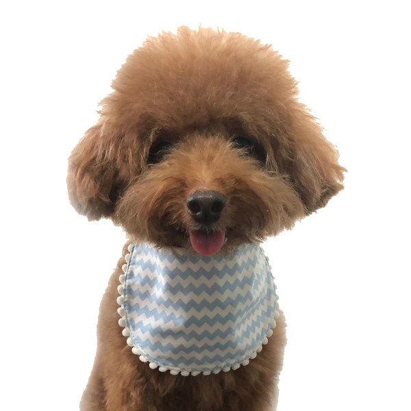 Hey Cuzzies Convertible Bandana - Ziggy Blue