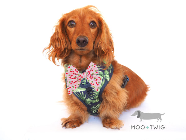 Moo+Twig DOG SHIRT HARNESS - Borneo Bliss