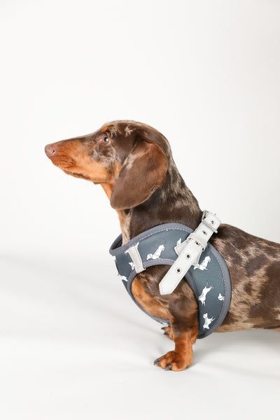 Moo+Twig Vegan Leather Step In Dog Harness - The Twiggy (Charcoal)