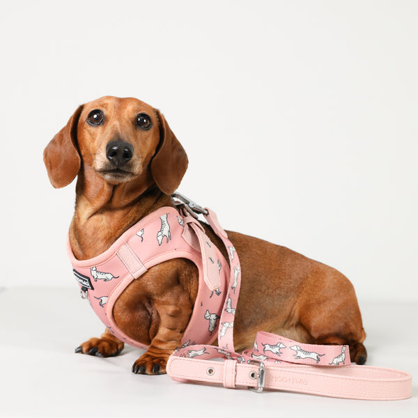 Moo+Twig Vegan Leather Step In Dog Harness - The Twiggy (Blush)