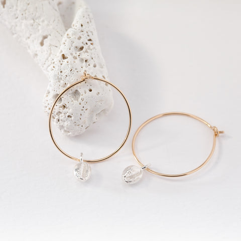 Gold Hoop Earrings with Salcombe Sea Shell