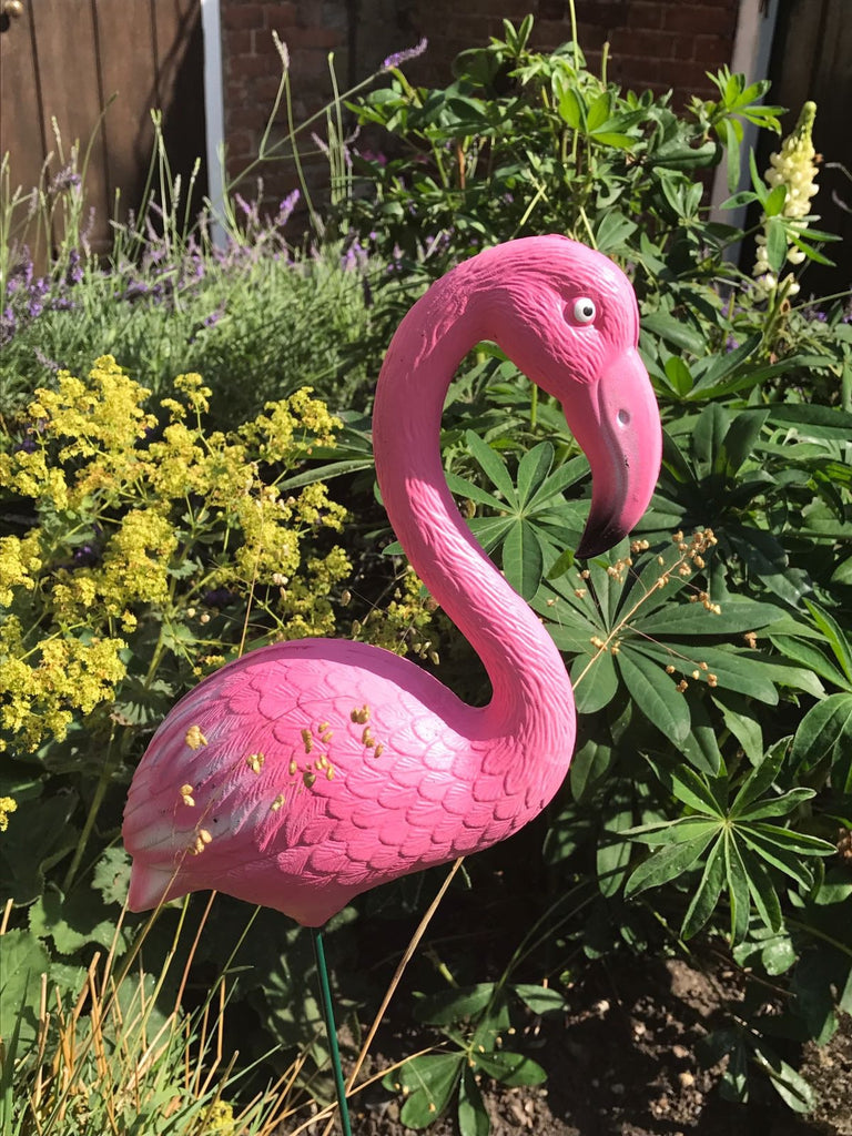 pink flamingo plastic flamingo all pink flamingo garden yard decor