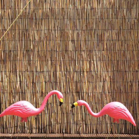 Flamingo (Pair) Plastic USA Made UV Resistant