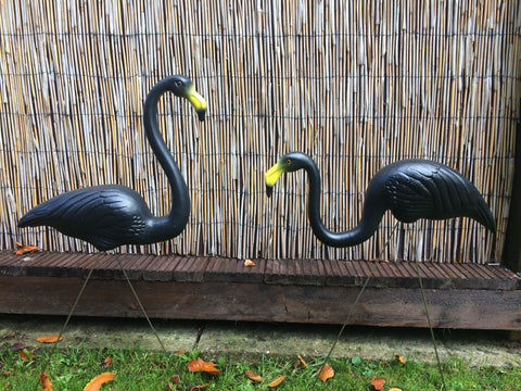 Spooky Black Flamingos (Plastic, Pair)