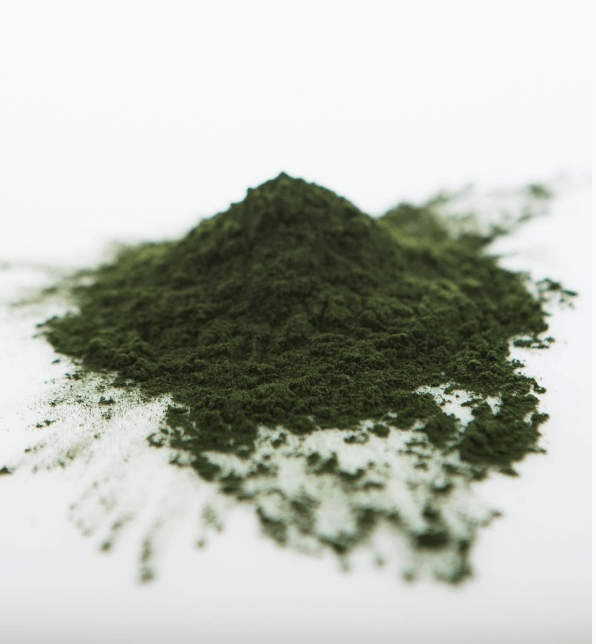 Sun Potion Organic Chlorella Powder