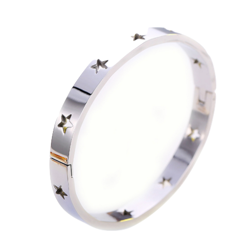 Star Struck Stainless Bangle