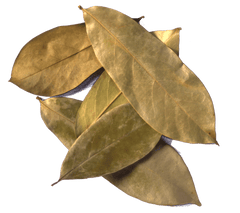 Graviola Leaves - Graviola Tea Company