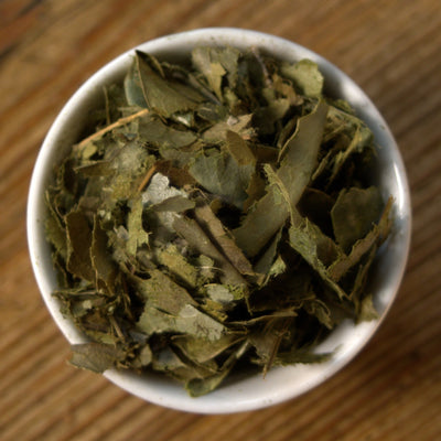 Graviola Cut - Shredded Soursop Leaves for Tea - GraviolaTeaCompany - 2