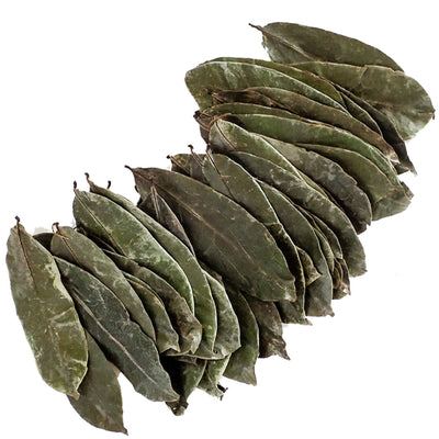 Pure Graviola - Whole Soursop Leaves for Tea - GraviolaTeaCompany - 3