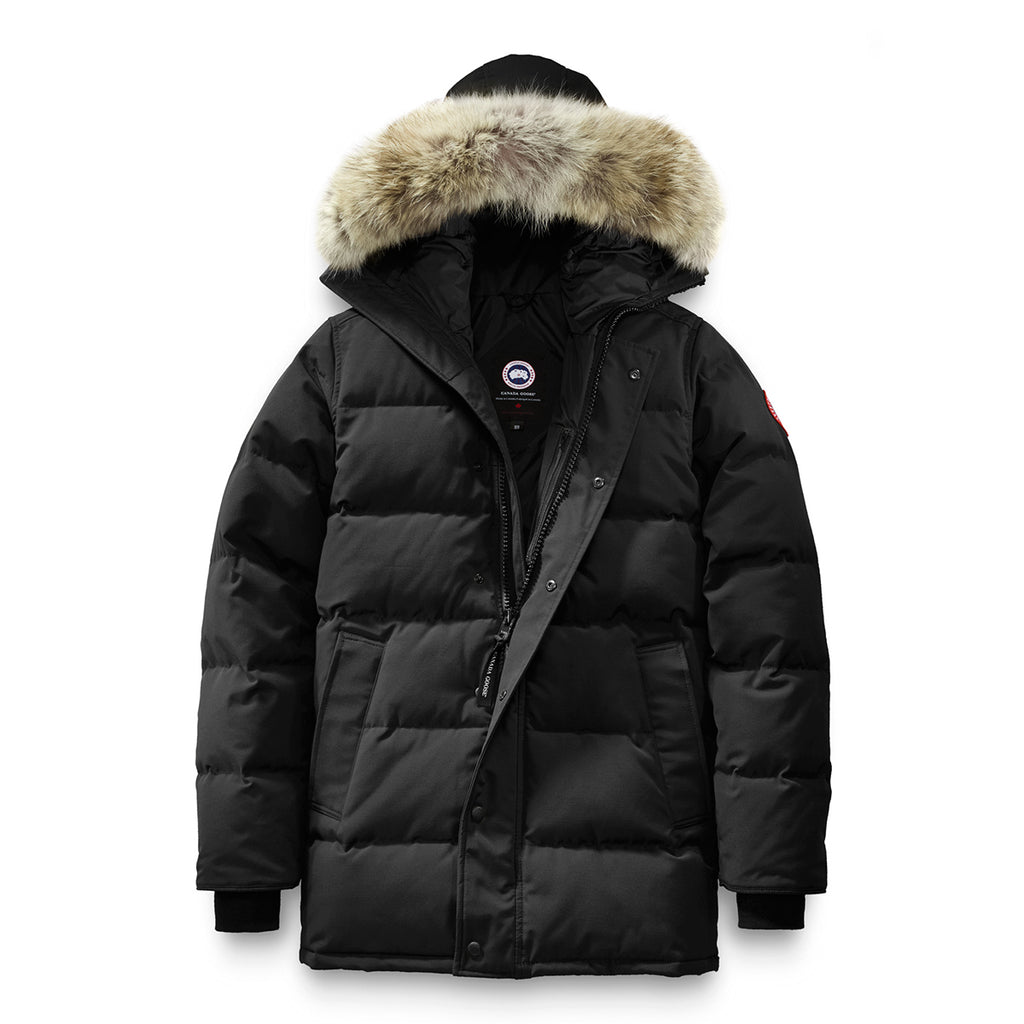 Image result for canada goose