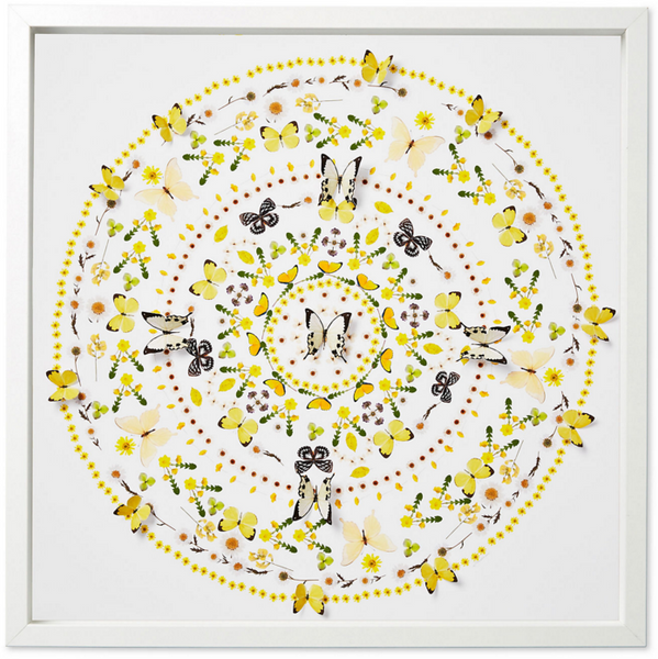 Flower and Butterfly Circle, yellow