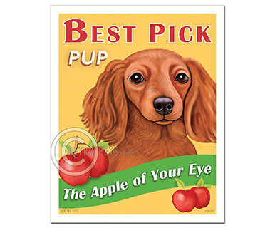 Best Pick - Doxie - Magnet - Pi Style Boutique - Retro Pets Art - Gifts & Decor