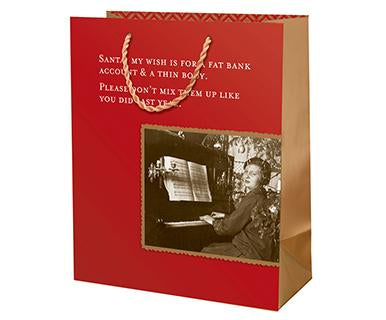 Fat Bank Account - Shannon Martin Designs Gift Bag