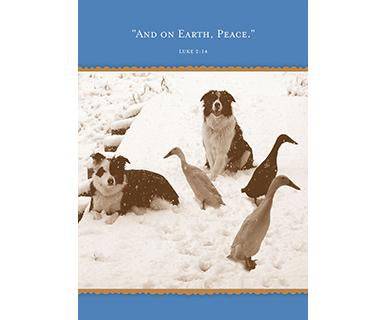 And On Earth, Peace - Shannon Martin Designs Holiday Card