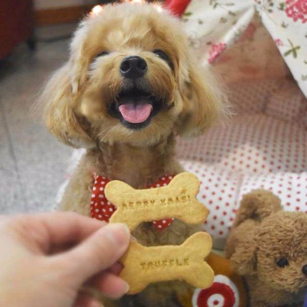 Dog Biscuit Name Customisation