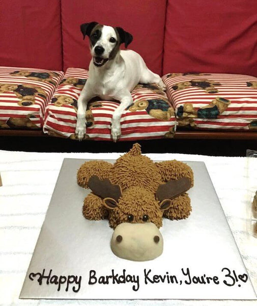 customised dog cake singapore