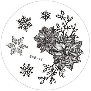 DS-OB - Snowflake Stamping Image Plate - SPB - 01