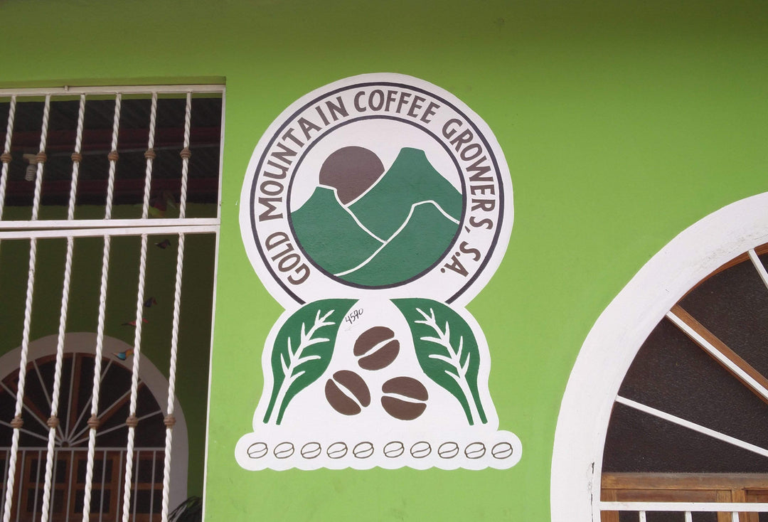 Gold Mountain Coffee Growers