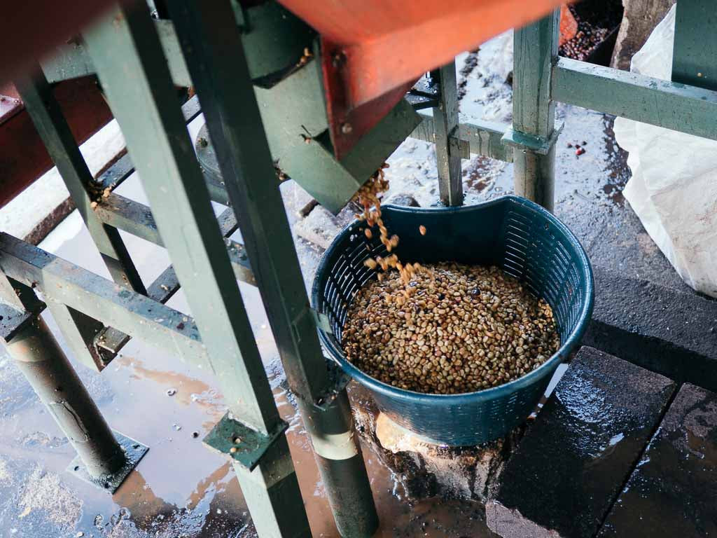 Pulping coffee