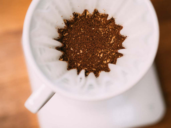 brewing filter coffee using burr grinder