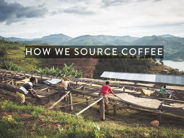 How we source coffee beans