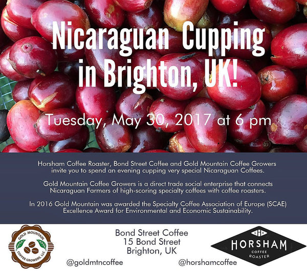 Nicaragua cupping session, coffee