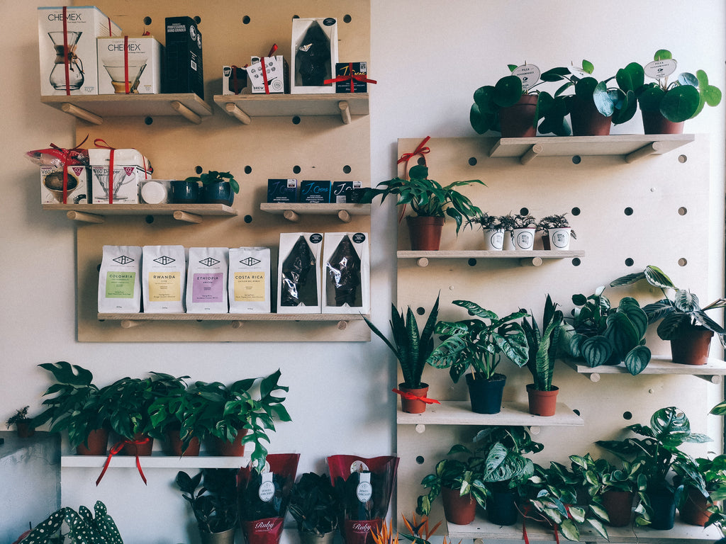 Urban Botanica Coffee and Plants