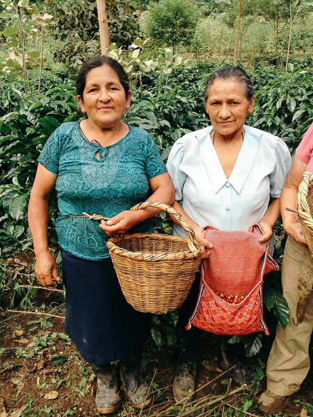 Women coffee producers at Cafe Femenino
