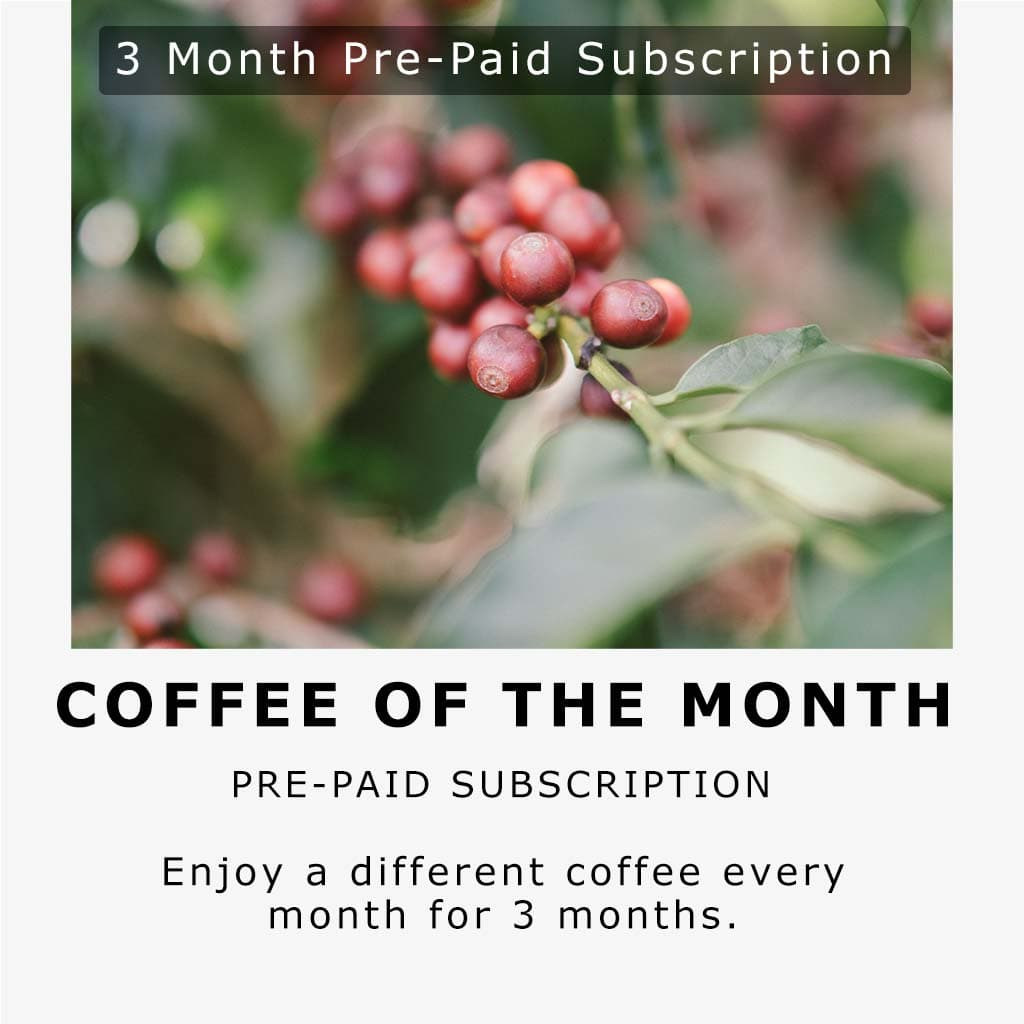 Coffee of the month - 3 month subscription