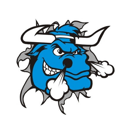Blue Bulls - PEC Vape Shop