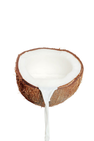 Coconut E-Liquid (PA) - PEC Vape Shop