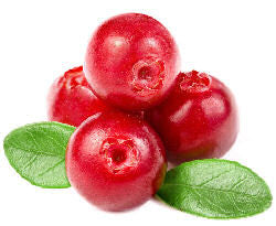 Cranberry E-Liquid (L) - PEC Vape Shop