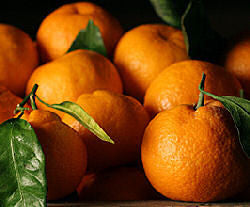 Mandarin Orange E-Liquid (FF) - PEC Vape Shop