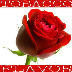 Rose Tobacco E-Liquid (FW) - PEC Vape Shop