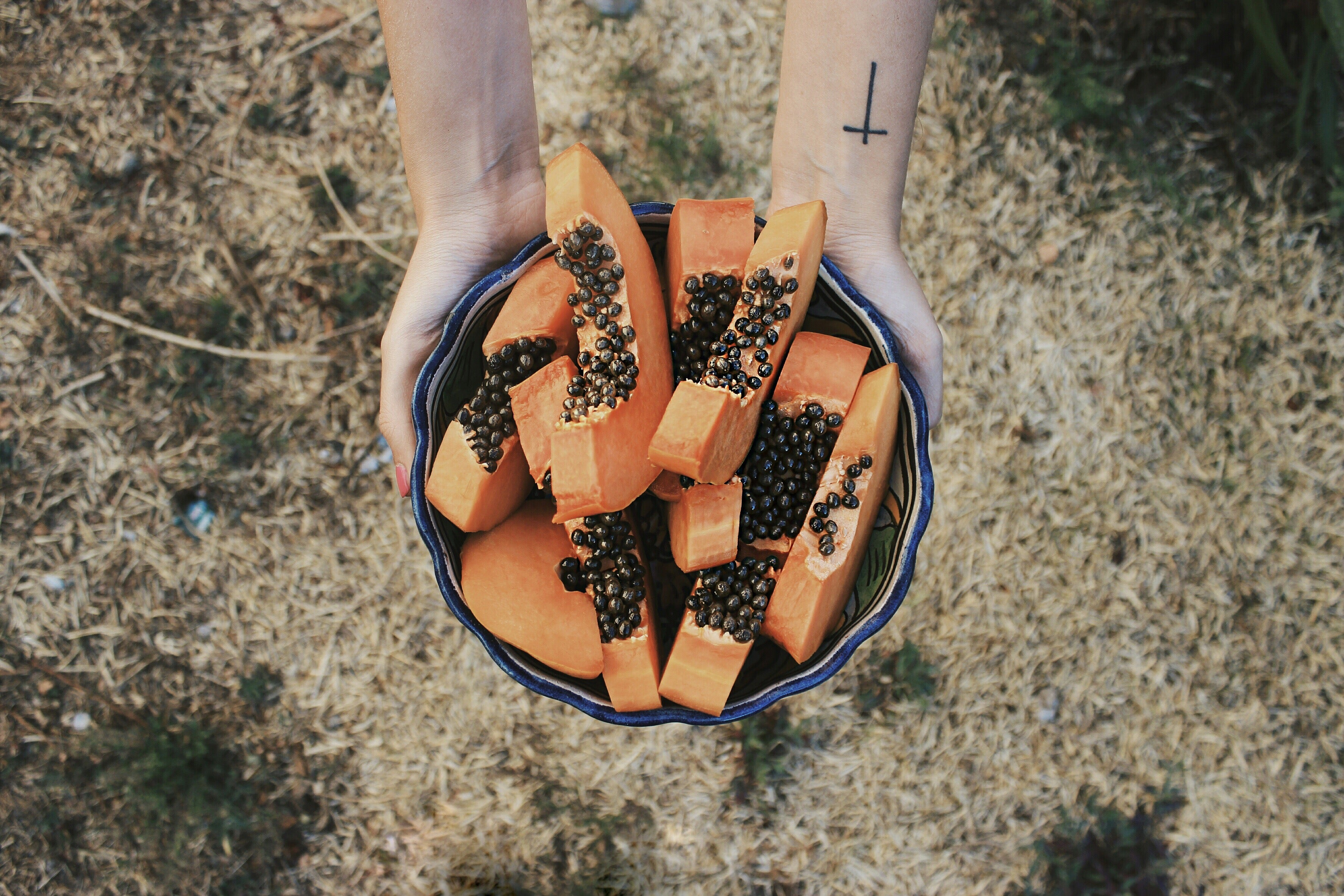 hands holding bowl of sliced papaya fruit