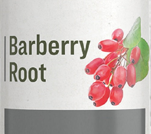 BARBERRY ROOT - Healthy Digestion Skin & Immune Support Tonic