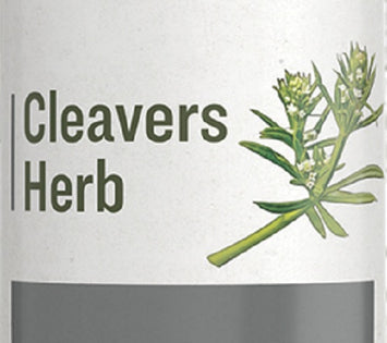 CLEAVERS HERB - Normal Urinary Tract & Lymphatic Function Support