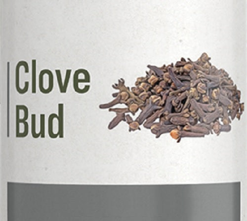 CLOVE BUD - Digestive Health Support & Sweet Healthy Smile