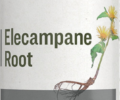 ELECAMPANE ROOT - Bitter Tonic Liquid Extract Tincture