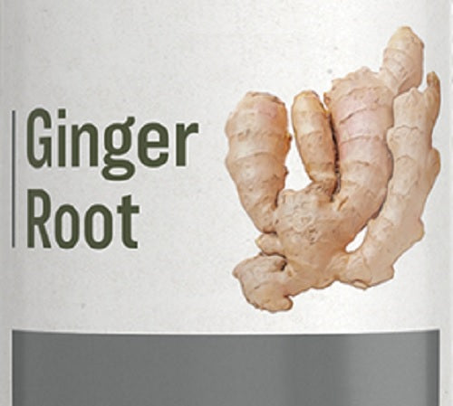 GINGER ROOT - Indigestion Nausea Circulation & Immune Support